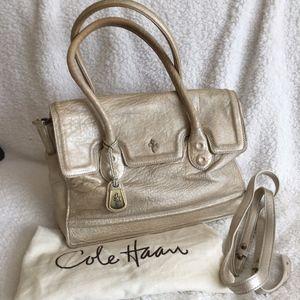EUC Cole Haan Distressed Metallic Leather Bag!!